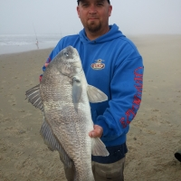 How to filet a black drum - video