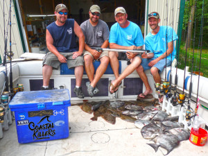 Flounder and spadefish after a good day