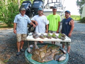 16 flounder and some seabass, another good day