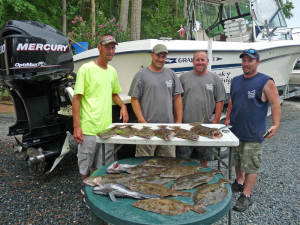 16 flounder and some seabass