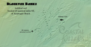 A sidescan view of the reef at Blackfish banks