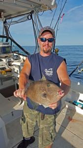 Big triggerfish