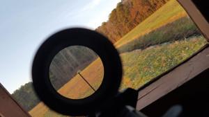 220 yards