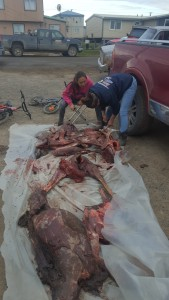 Cleaning Caribou