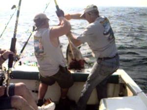 Tuna coming over the rail